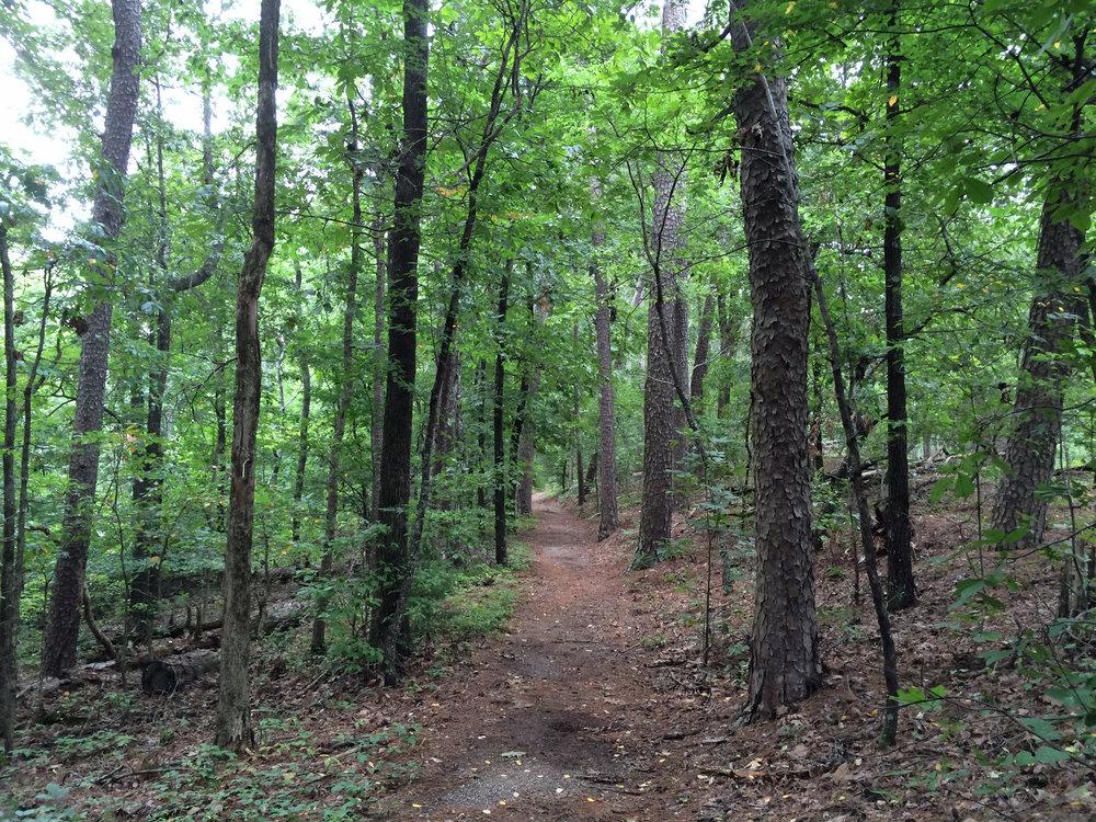 Dogwood Trail, Hot Springs National Park, Arkansas