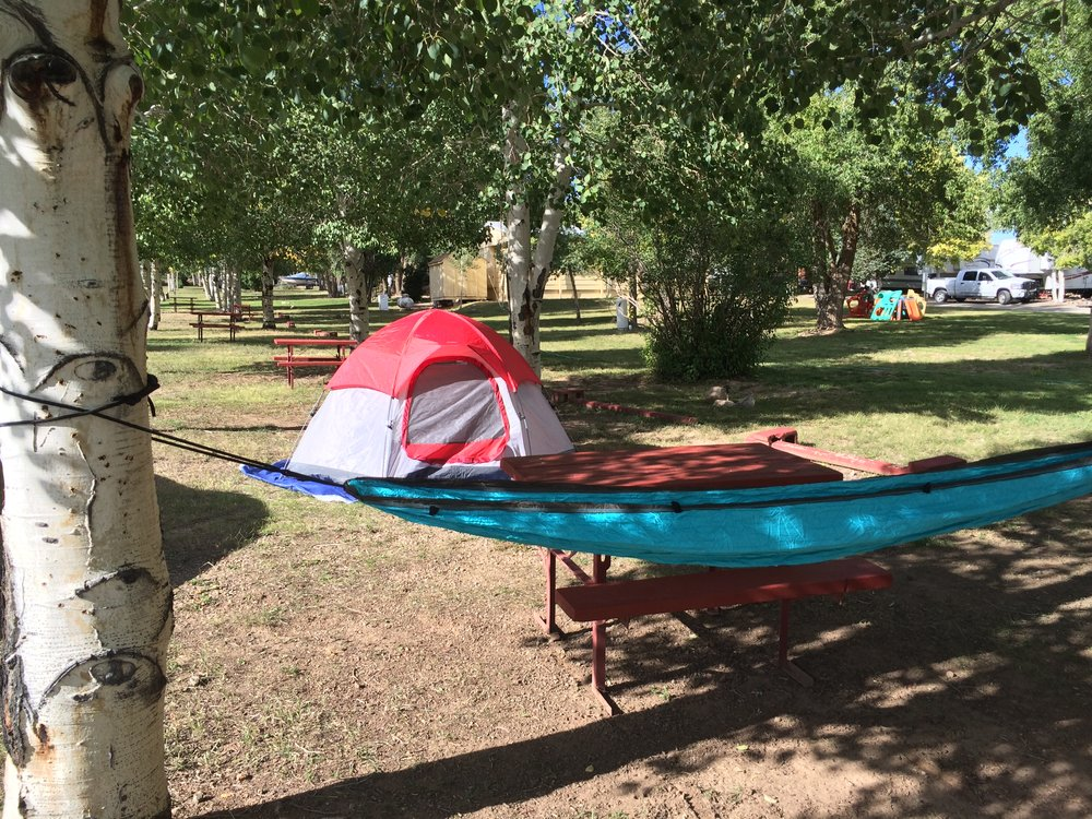 This hammock is by far my favorite camping item!