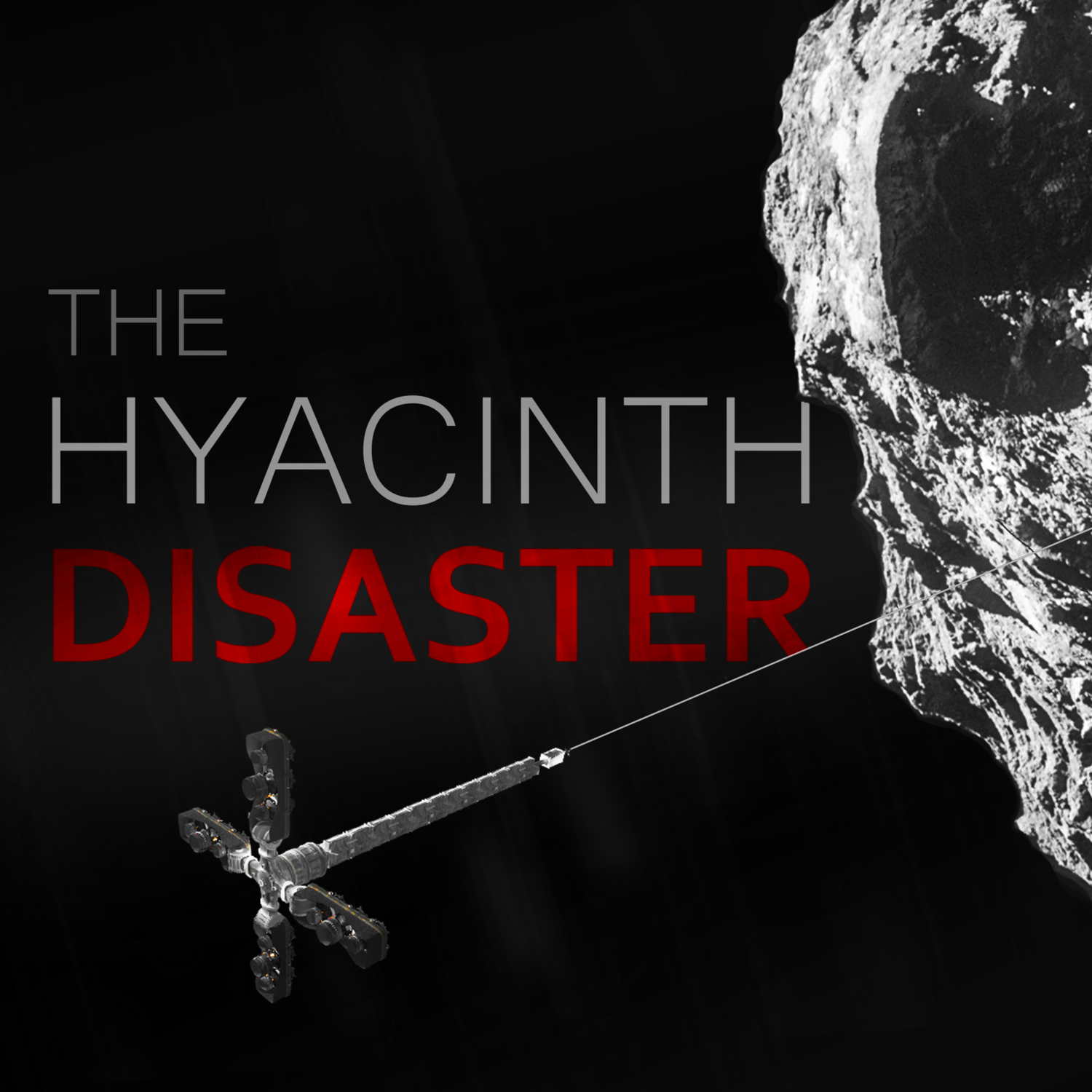 The Hyacinth Disaster