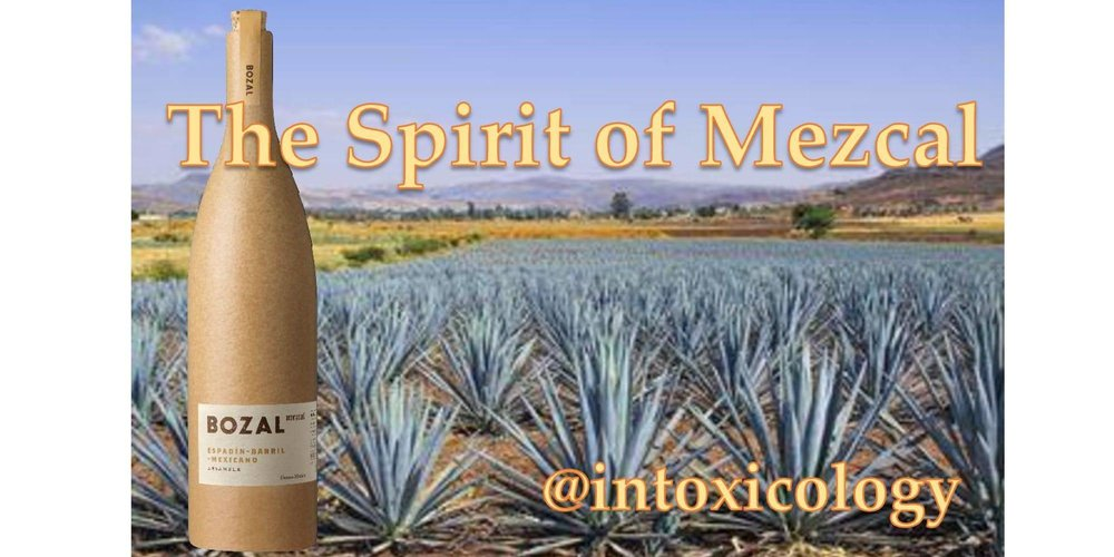 Taste and learn about a true artisan spirit. Chuck Kane from Bozal Mezcal will lead this class and we will cover how terroir and agave produce a variety of flavors that are exotically intense, with rich earth tones and savory smokiness. From the heart of the maguey these flavors are traditionally extracted to produce mezcal that is wildly refined. Bozal believes that something wild produces a far richer spirit.    Class fee $35- Includes mezcal tasting and sample cocktails. Light snacks will be served.   Chuck Kane' has been in the Wine & Spirits Industry for 20 years and has achieved a Level 2 Certificate from the Master Court of Sommeliers and been certified by the Tequila Regulatory Committee of Mexico as a Master Trainer in Tequila. Chuck is certified in production & distillation with a focus on Whiskey & Agave based Spirits.    Seating is limited advance purchase ticket is required.