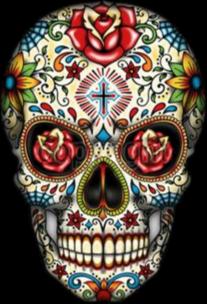 3D Skull Crop.png