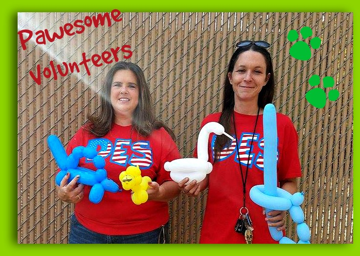 DES is so GRATEFUL for these two lovely ladies! Debi Dale and Christina Erickson were a big help on Fun Day! They made some amazing balloon animals and creations for the students! Thank you both for taking time out of your busy lives to put smiles on the kids' faces! (And in case you are wondering, YES, they do parties!) DES and the PPA thank you for ALL you do!