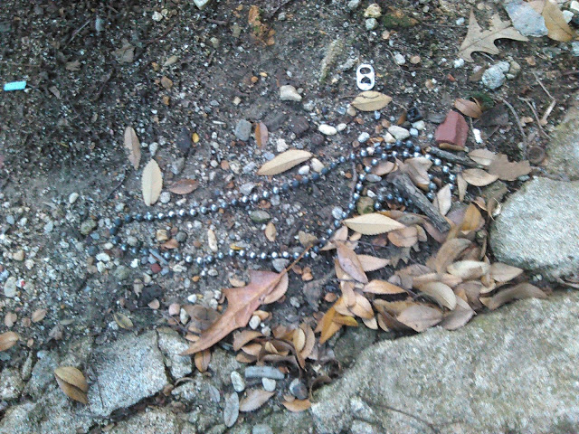 Mardi Gras Beads Litter