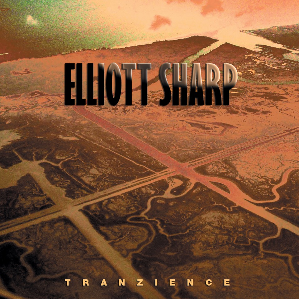 ELLIOTT SHARP   Tranzience    MORE INFORMATION
