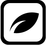 What is the rise movement | Begin yourrise.com