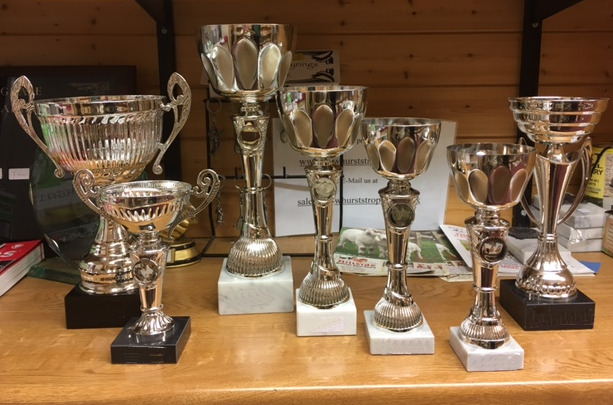 Trophies for the show .jpg