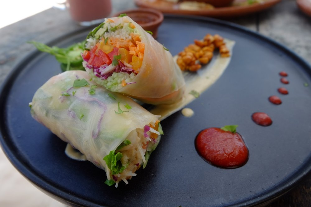 Summer Rolls at Mocondo