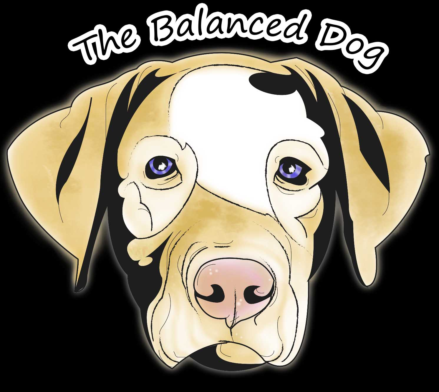 The Balanced Dog Delray Beach