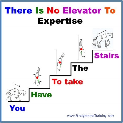 no-elevator-to-expertise-doing-the-good-work.jpg