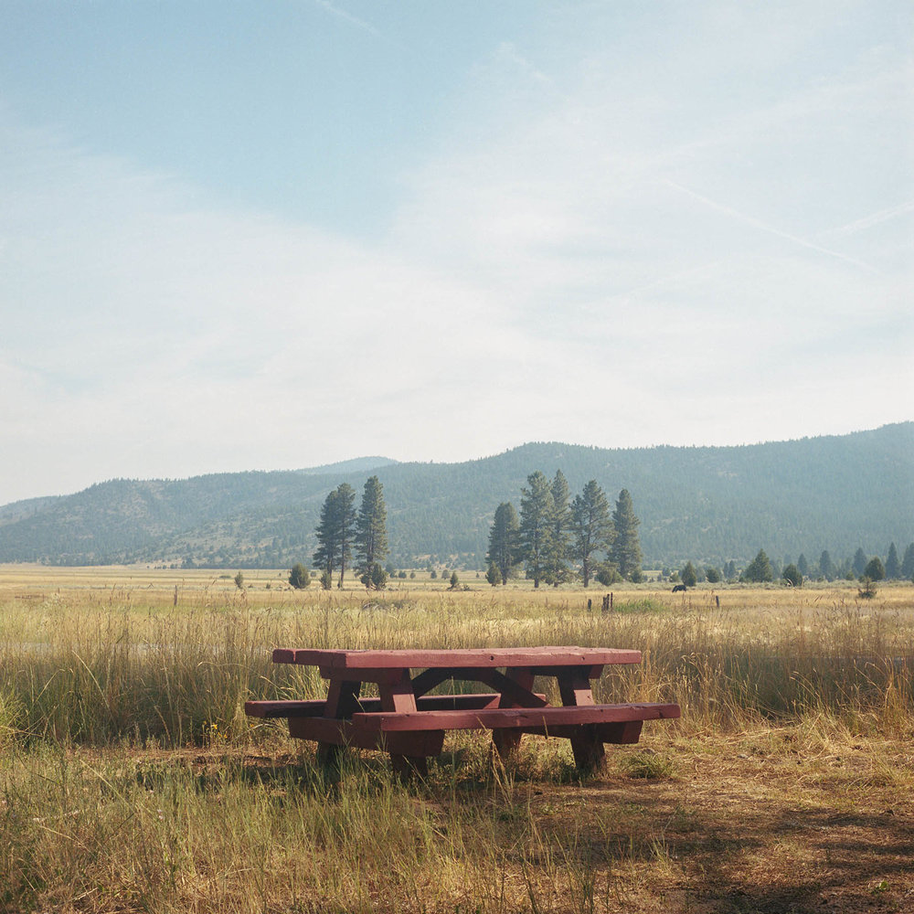 Sierra Springs Bench.jpg