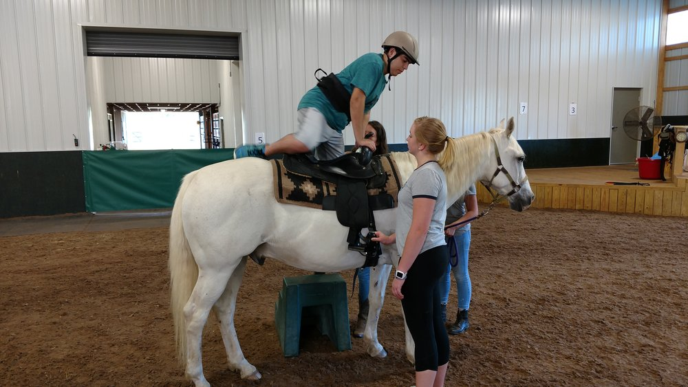 Doc the Horse, Alexis (Hiding), Some Volunteers, and Sal (Makin' the Mount Look Easy!)