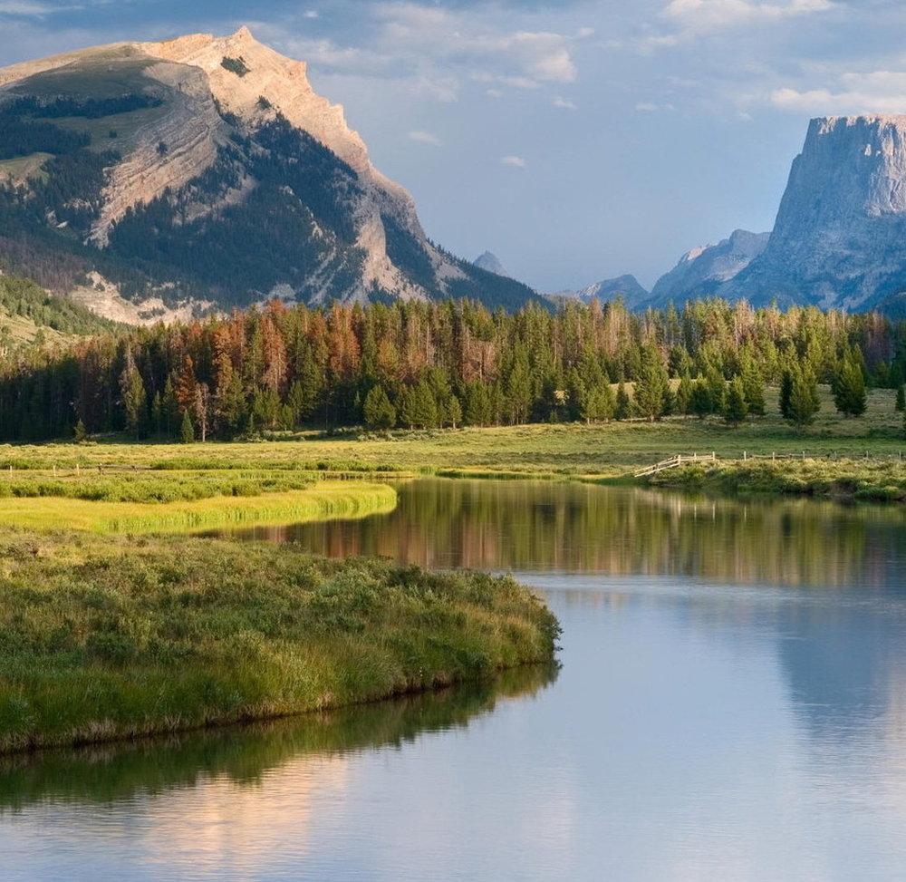 river-nature.jpeg