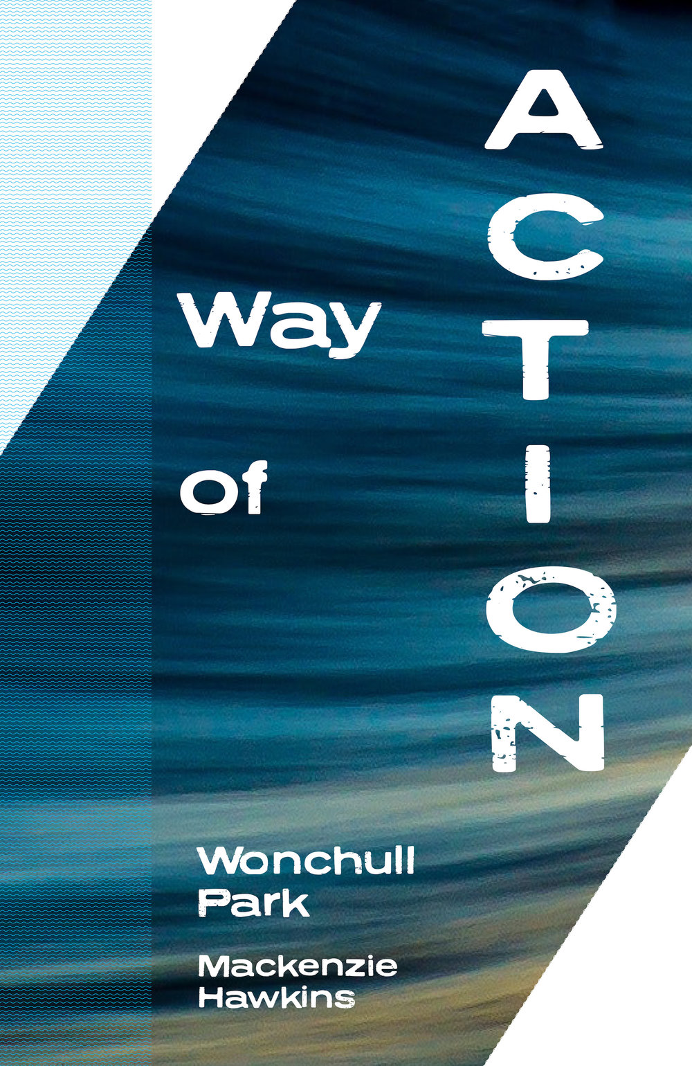way of action cover - small size.jpg