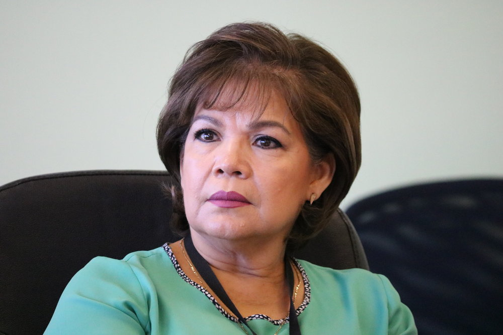 Rosa María Villarreal, Mavitravel