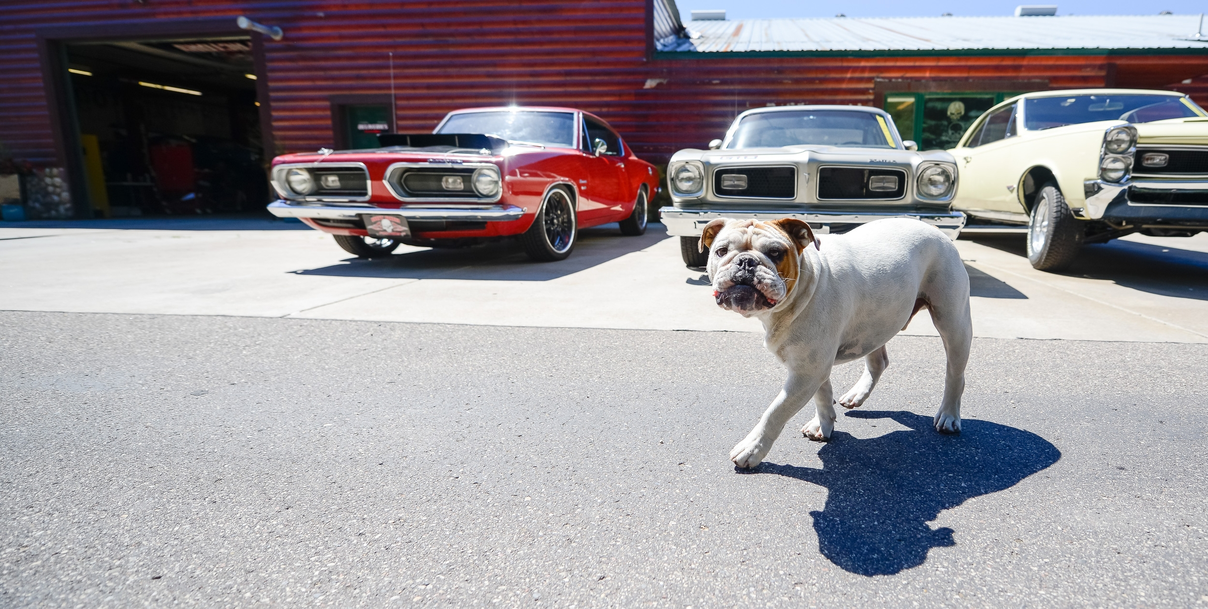 Hot Rod Factory | Hot Rod Cars Shop