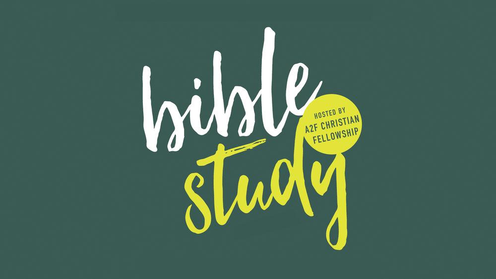 biblestudysplash2 (1).jpg