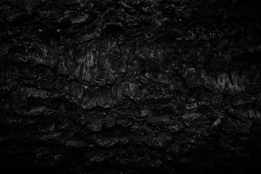 andrewfrasz_textures-2.jpg