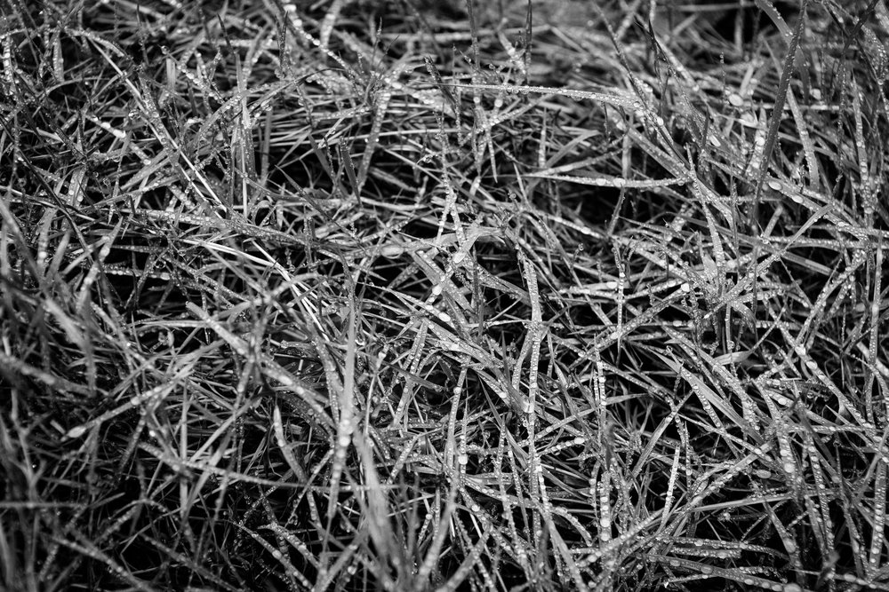 andrewfrasz_textures-14.jpg