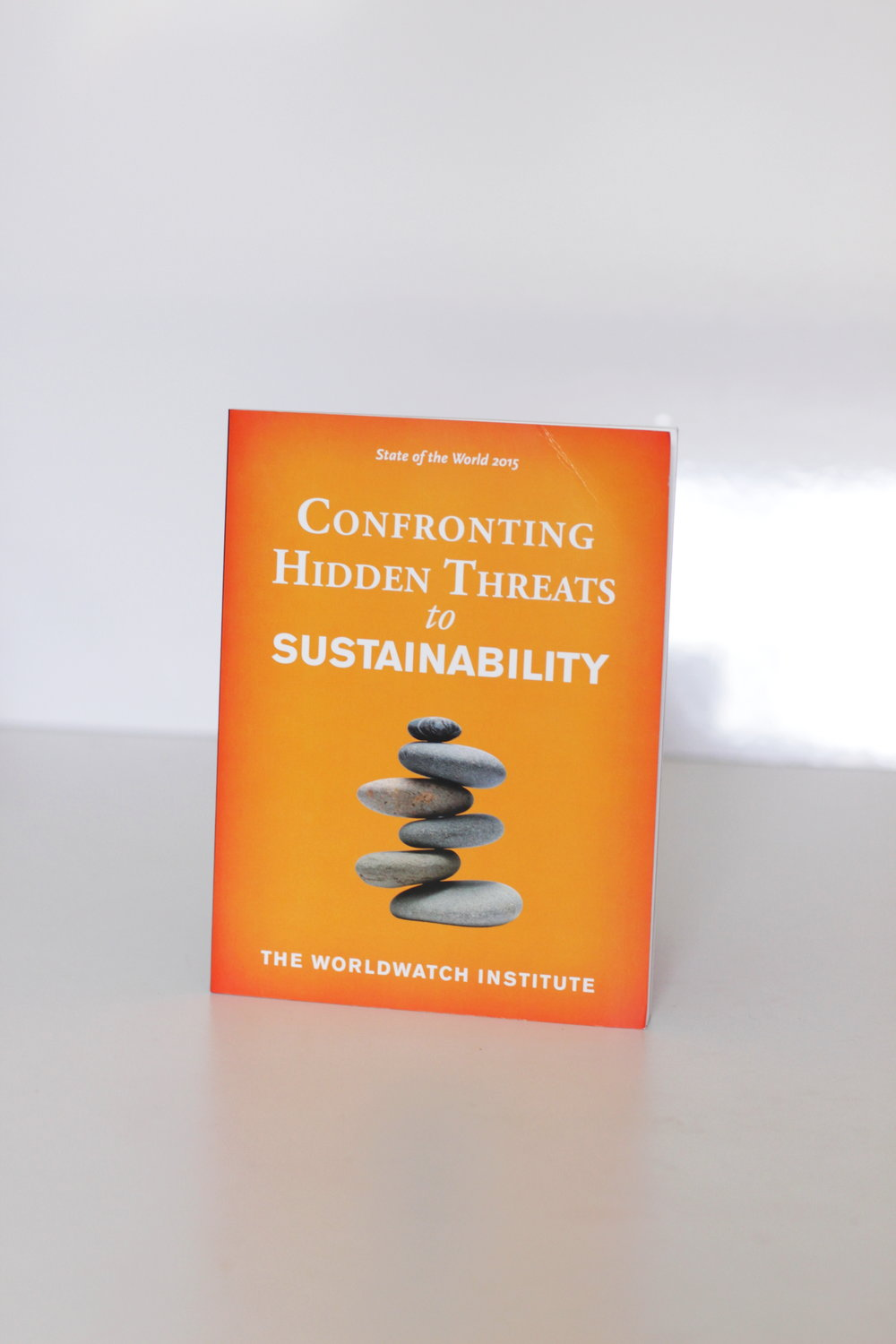 Confronting Hidden Threats to Sustainability