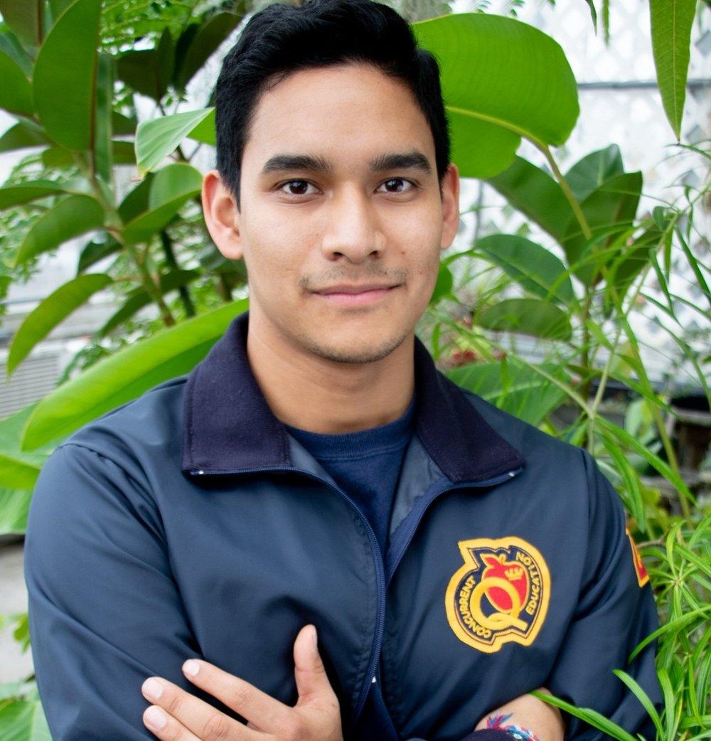 Services Deputy