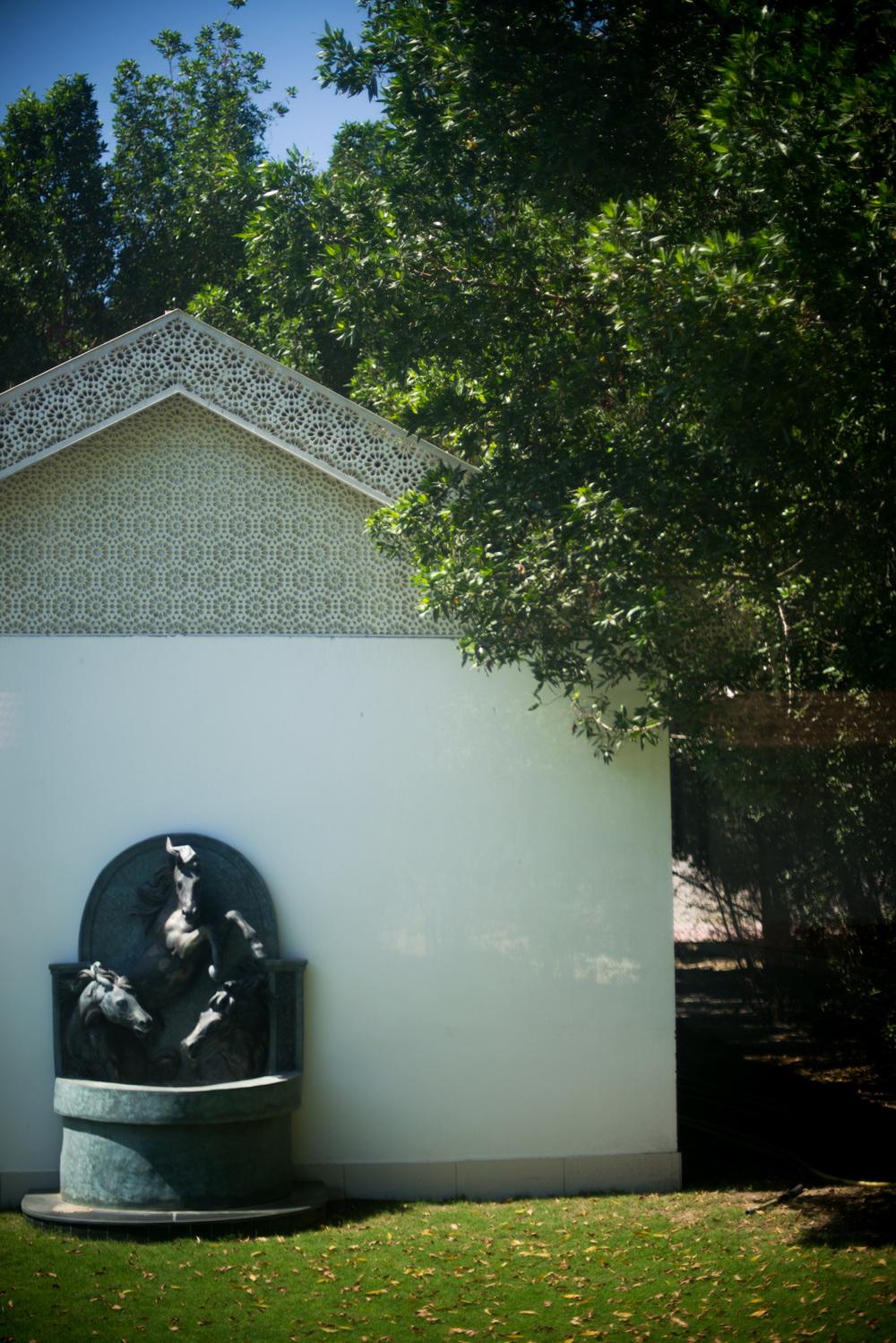 9_Chhandak Pradhan-place-Saud_Bhawan-travel_Oman.jpg