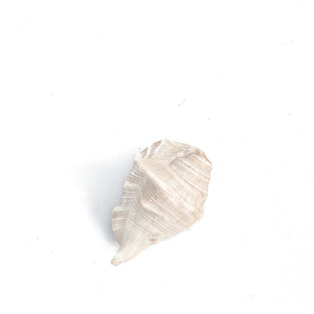 41_Chhandak Pradhan-Object-Bengal-Bengali.jpg