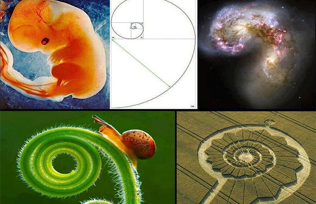 Fibonacci Sequence and Golden Ratio
