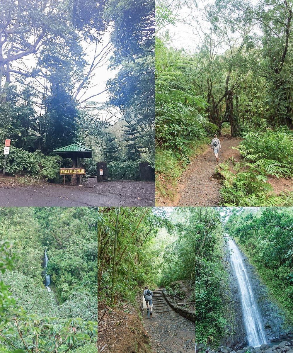 Photos taken during Manoa Falls Trail near Waikiki, Honolulu, Hawaii.