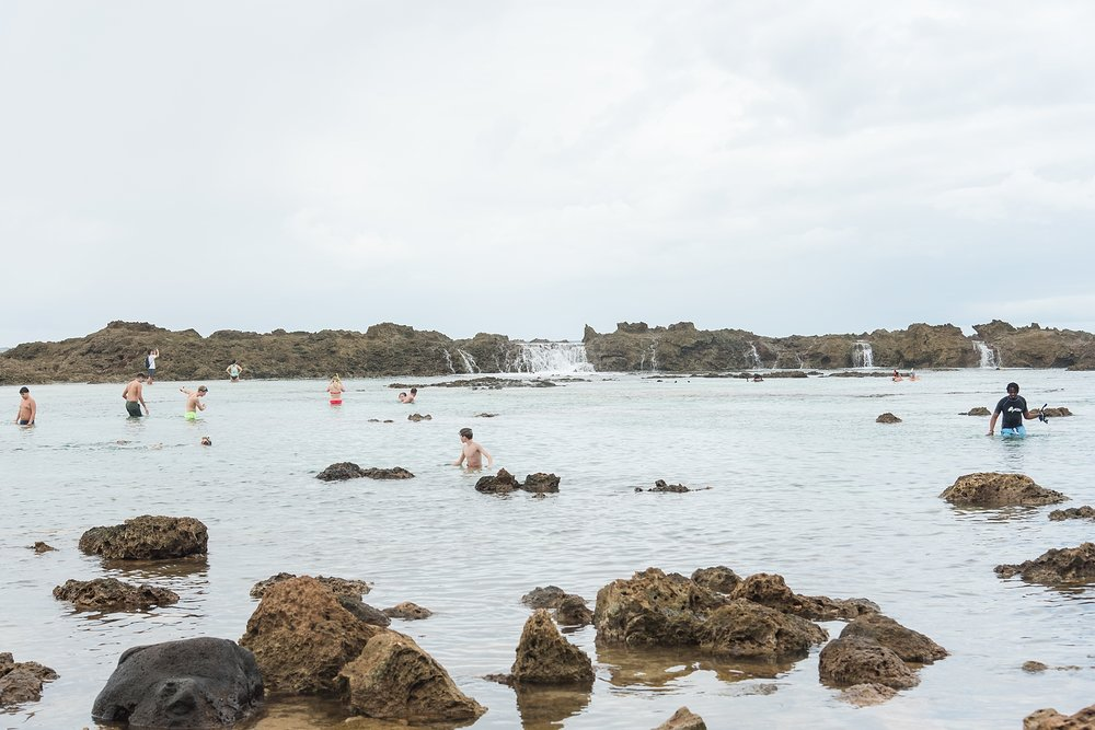 Snorkeling at Shark's Cove in North Shore, Oahu, Hawaii. Photo taken by Jade Min Photography, LLC.