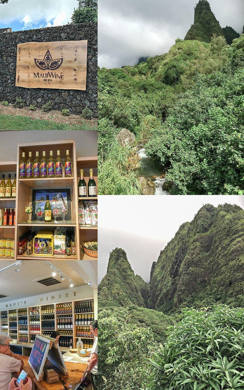If you have time, I highly recommend a visit to Maui Wine and the 'lao Valley State Park.The three photos on the left is of Maui Wine. They will ship your bottles to the mainland. Here's a secret - you can also get their wines from Cost Plus World Market!The two photos on the right are of'Iao Valley State Park, where you'll find easy to intermediate hiking trails. -