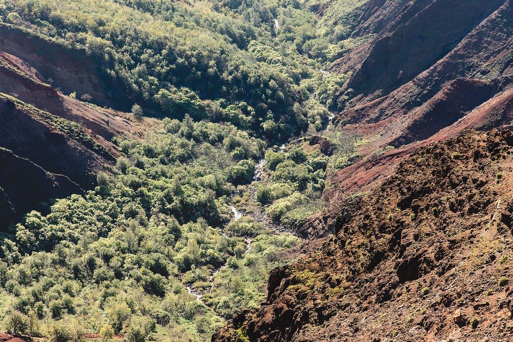 Pu'u Hinahina Lookout, located at mile marker 13 in Waimea Canyon. Photo by Jade Min Photography, LLC.