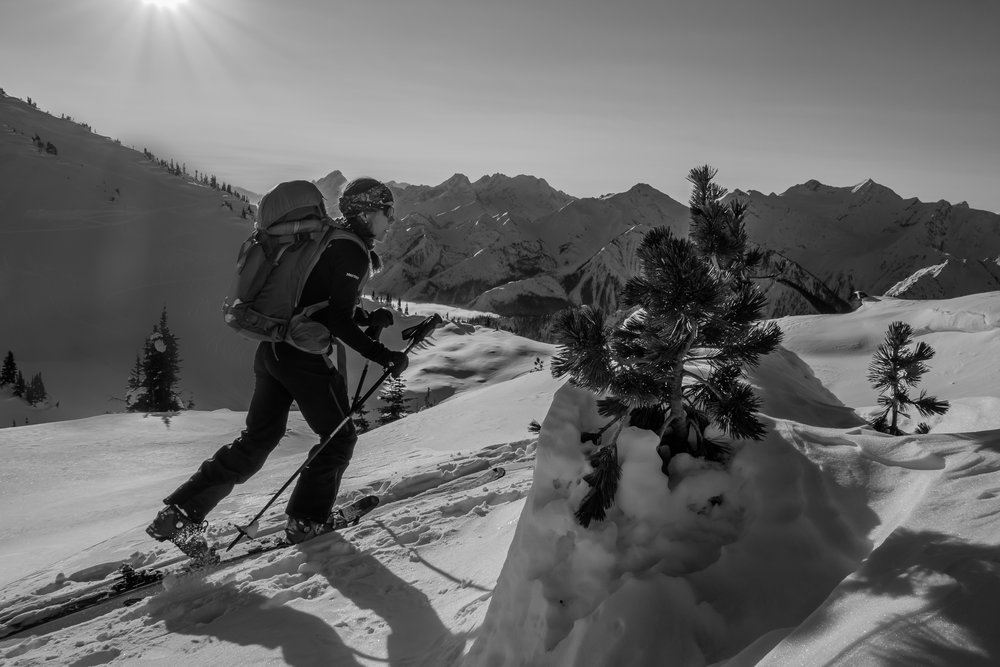 ski touring Sunrise Lodge. Pic: Earl