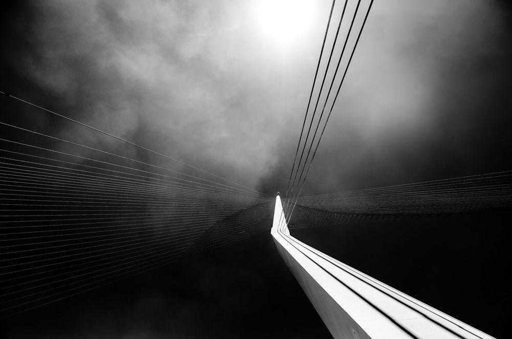 """""""Calatrava Bridge,"""" 2014  Dor Kedmi"""