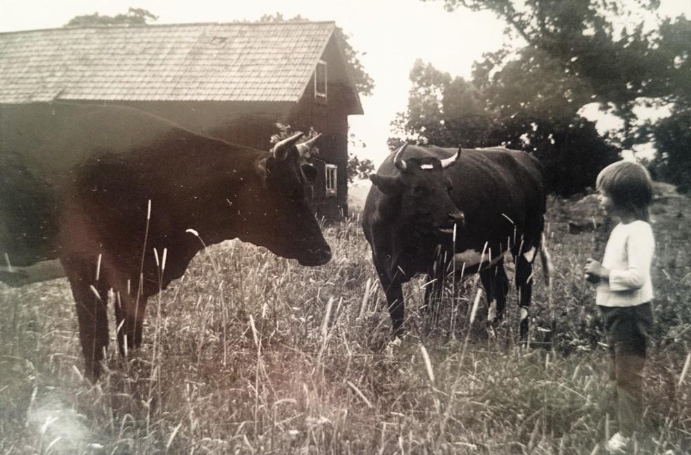 Anette hälsar på korna 1974.