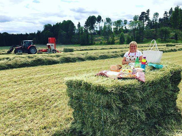 På bilden ser ni vår hjälte under höskörden - Bea som alltid dukar upp med god mat ute på åkern😍🙌🏻 #livetpålandet