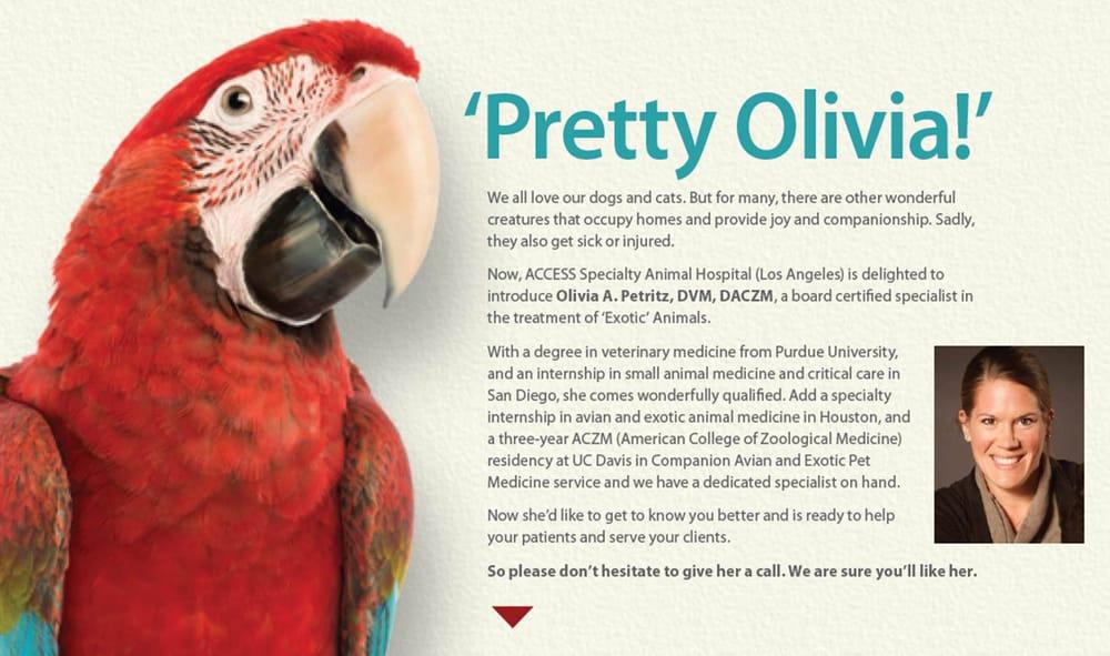 pretty olivia.jpg