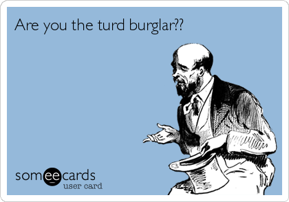 are-you-the-turd-burglar--fd284.png