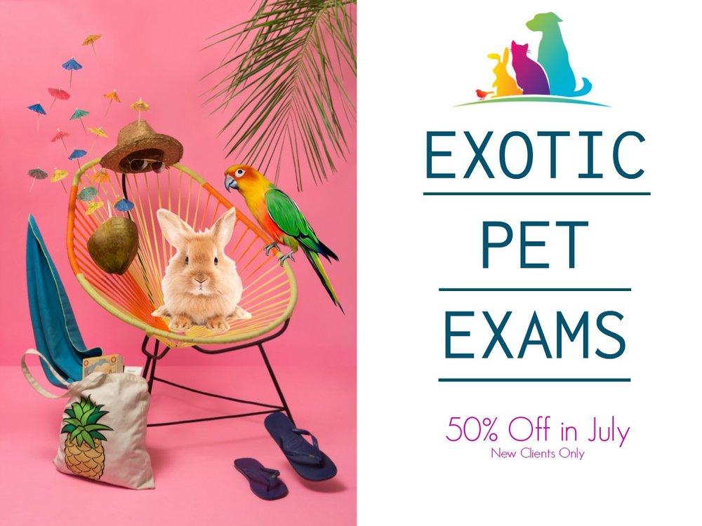 Exotics Promo.jpg