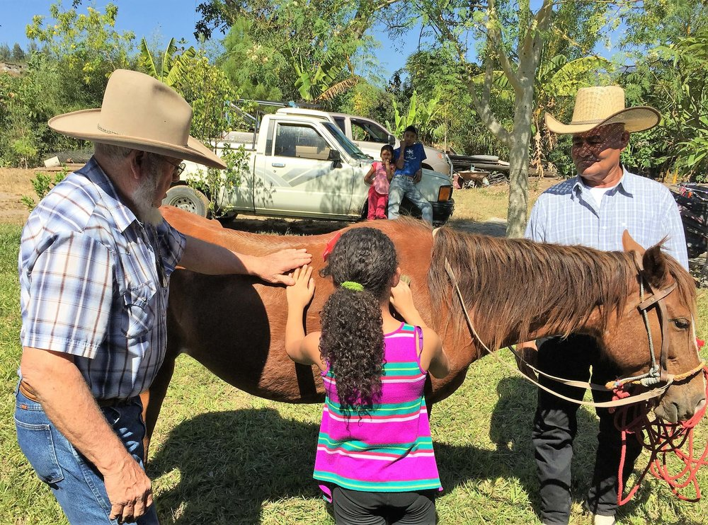 Sam Equine Therapy getting to know the horse.jpg