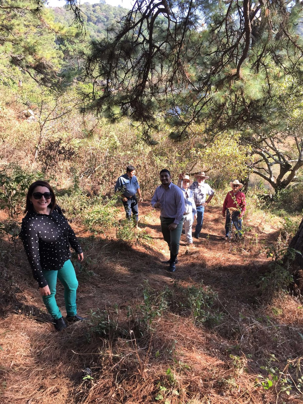 The group in Moyuta showing us the forest near their coffee plantation.jpg