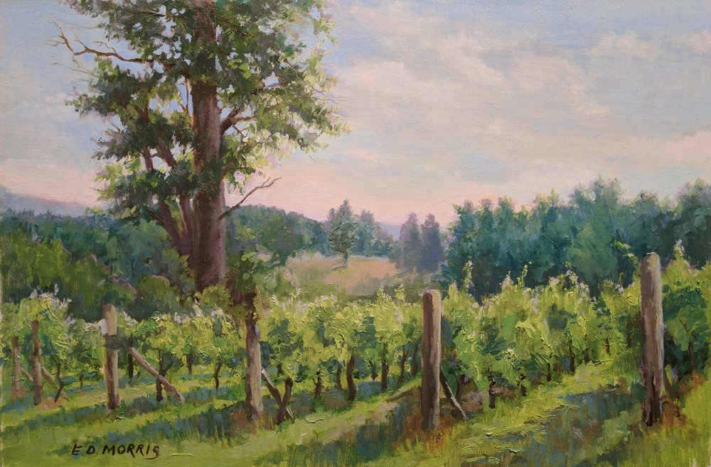 Addison Winery Summer Morning