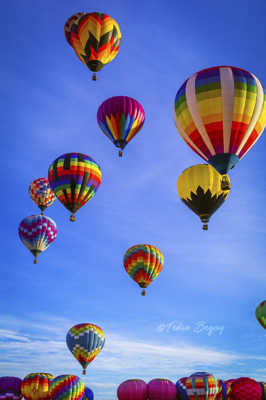 Balloon_Fiesta-16.jpg
