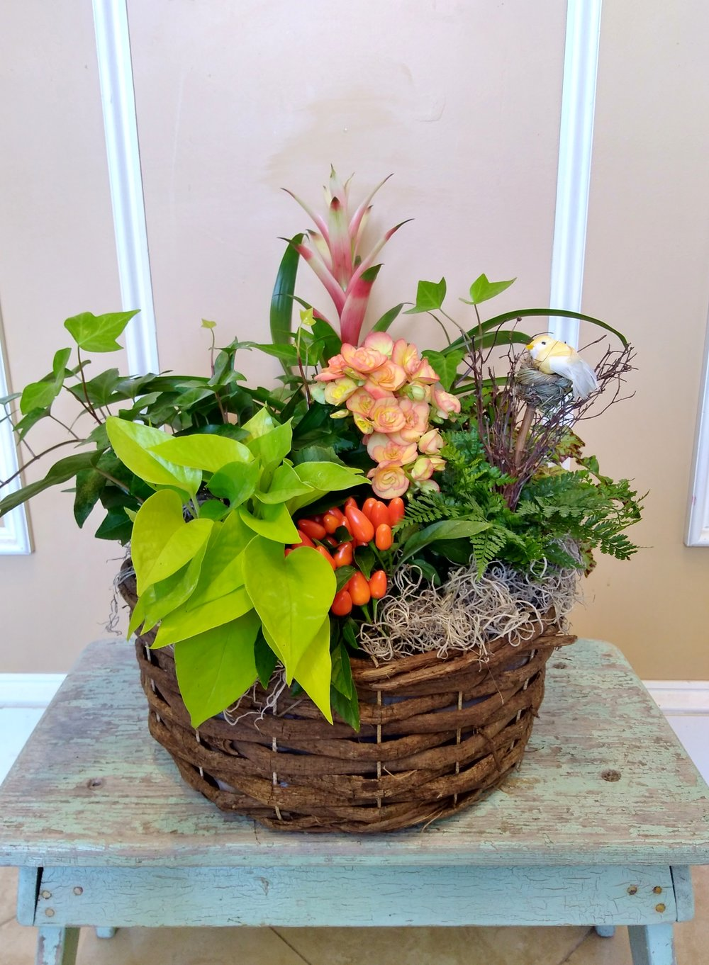 C2   $60 - $125 European plant basket. $60 as shown.