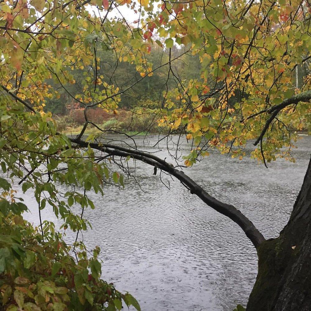 Charles River in Rain