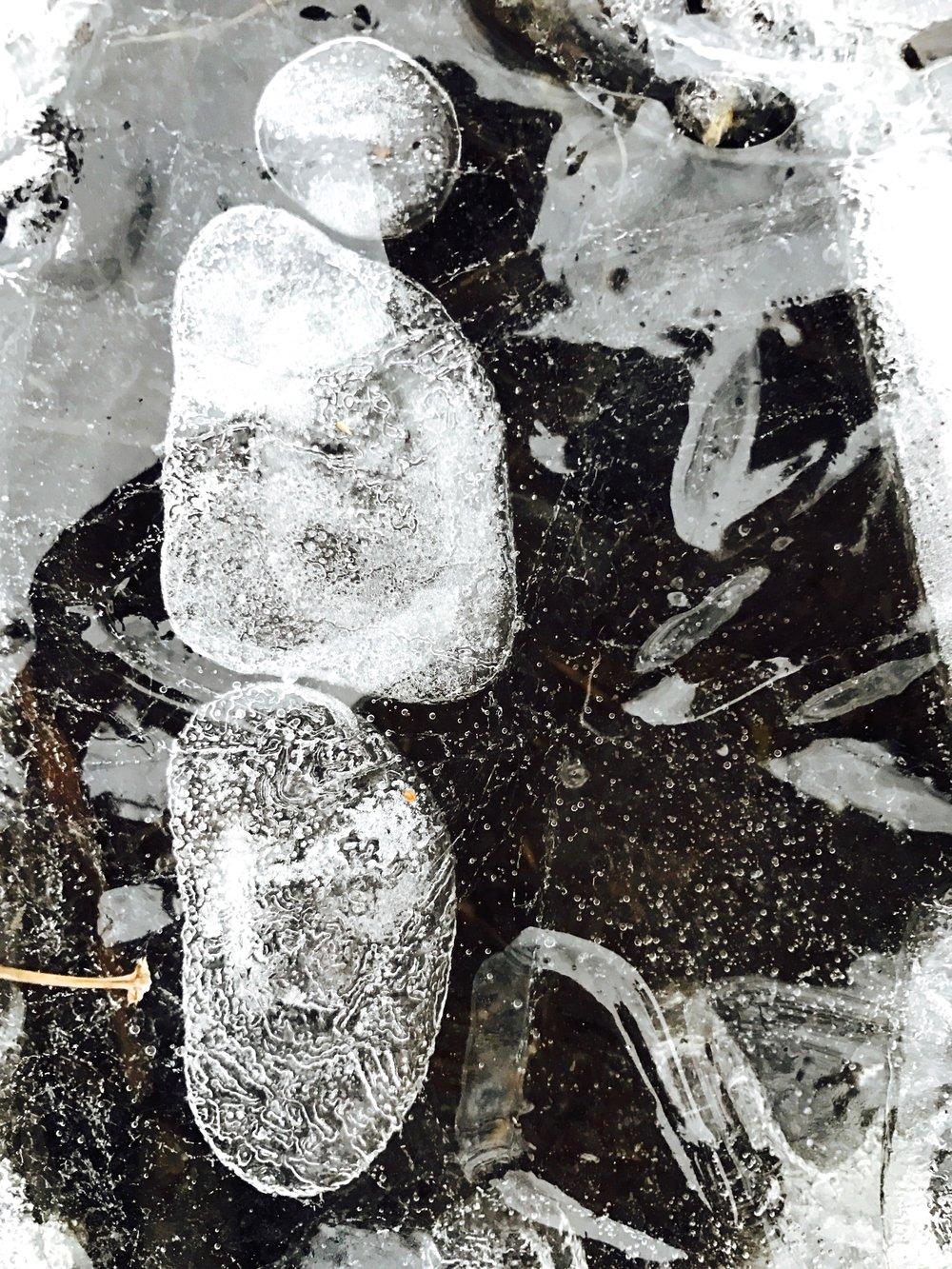 Self-Portrait on Ice