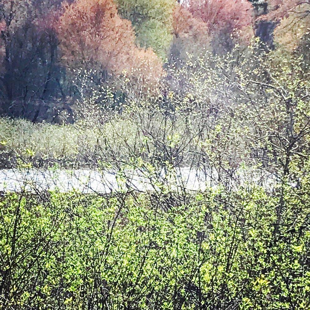 river impression.JPG