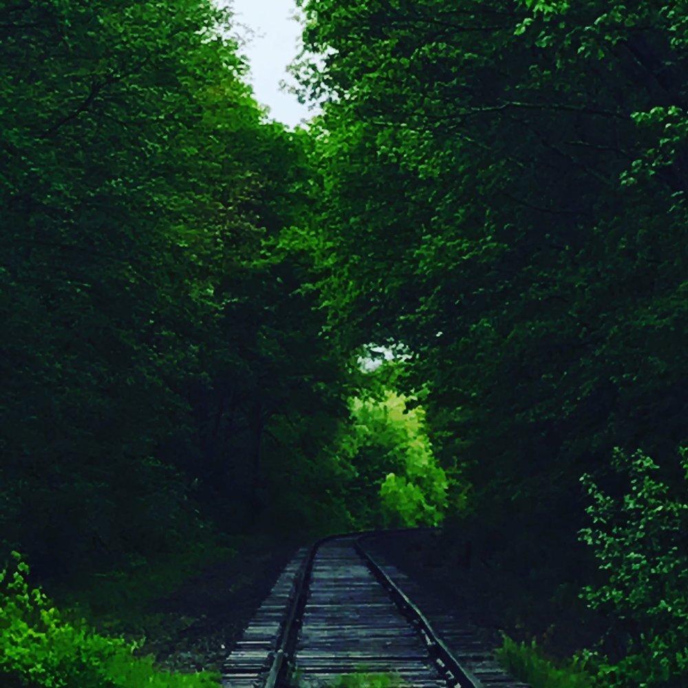 enchanting tracks.JPG