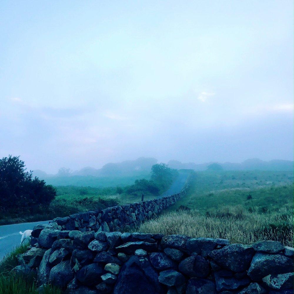 brick wall fog.JPG