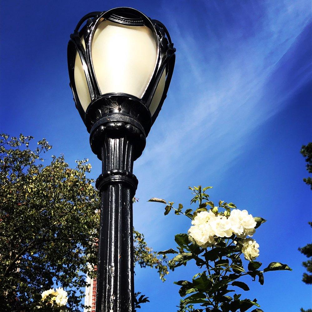Lamp near Central Park