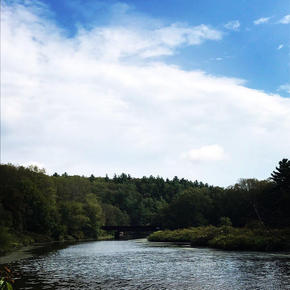 riverview.JPG